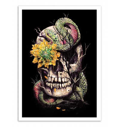 Art-Poster - Snake and Skull - Nicebleed