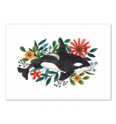 Art-Poster - Orca - Ploypisut
