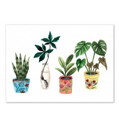 Art-Poster - Plants - Ploypisut